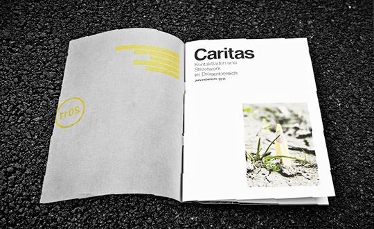 Годовой отчет Caritas