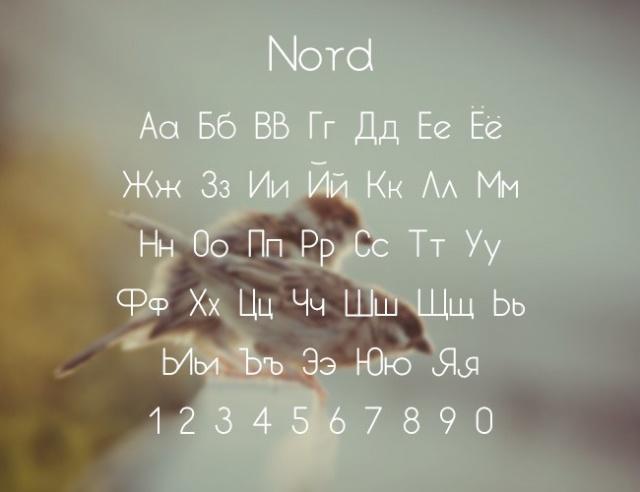 Бесплатные кириллические шрифты #33