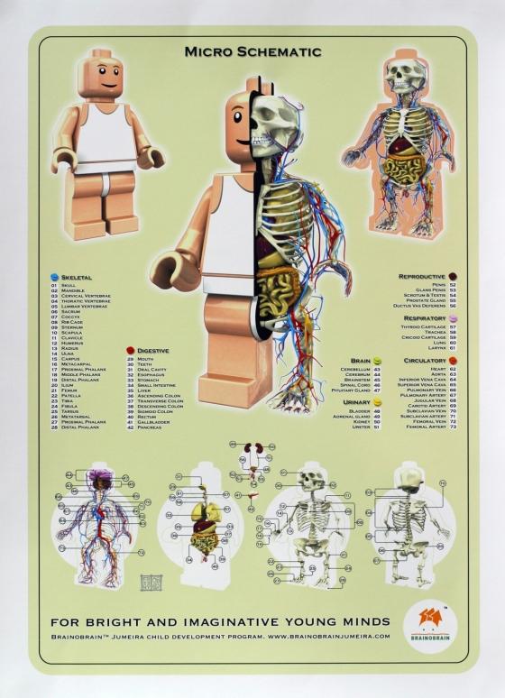 Анатомия игрушек