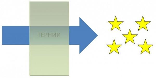 pogovorki-v-infografike_17