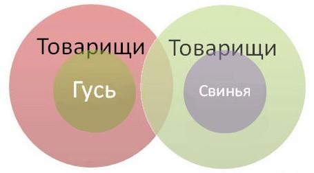pogovorki-v-infografike_20