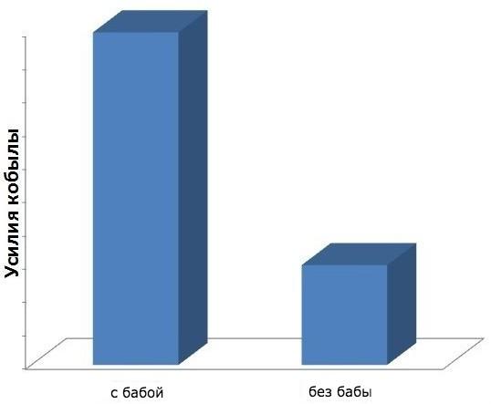 pogovorki-v-infografike_8
