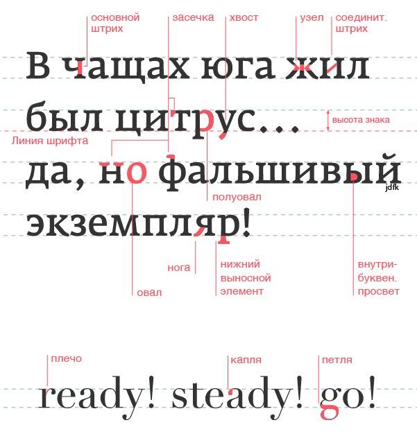 15-samyh-vazhnyh-chastej-bukvy_1