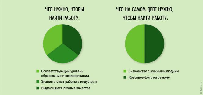 24-ironichnyh-fakta-iz-zhizni_18