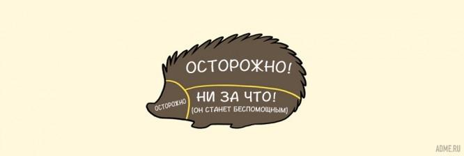 kak-pravilno-gladit-zhivotnyh_6