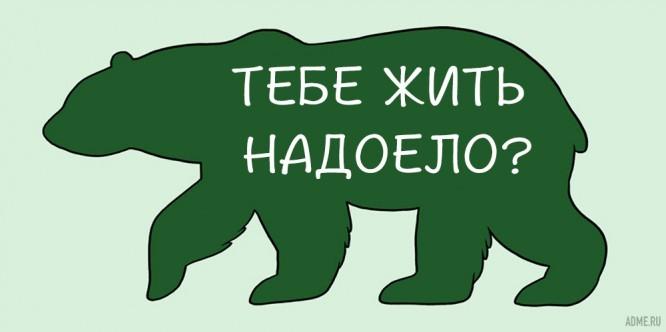 kak-pravilno-gladit-zhivotnyh_9