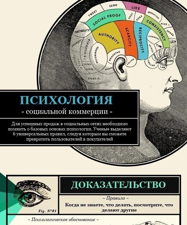 10-primerov-infografiki-po-smm_pr7