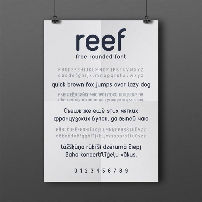 reef-cyr-2