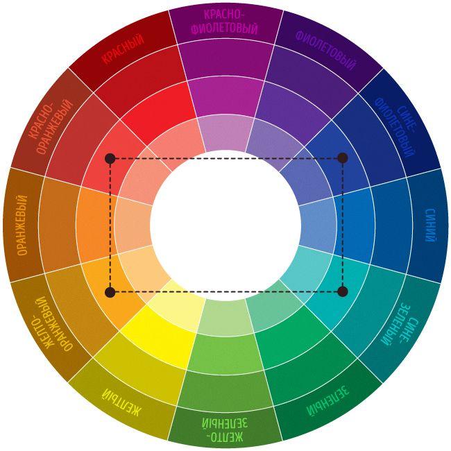 5-color-scheme