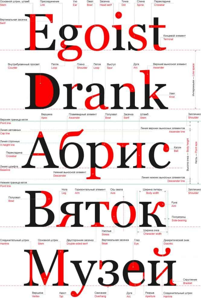 Font-anatomy-sm