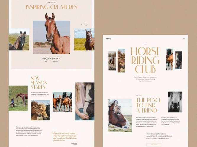 horse-riding-club-website-tubik-1024x768