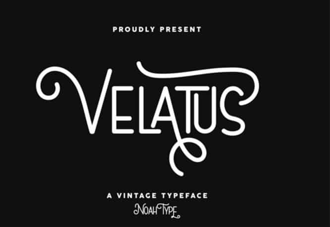 velatus-1024x706